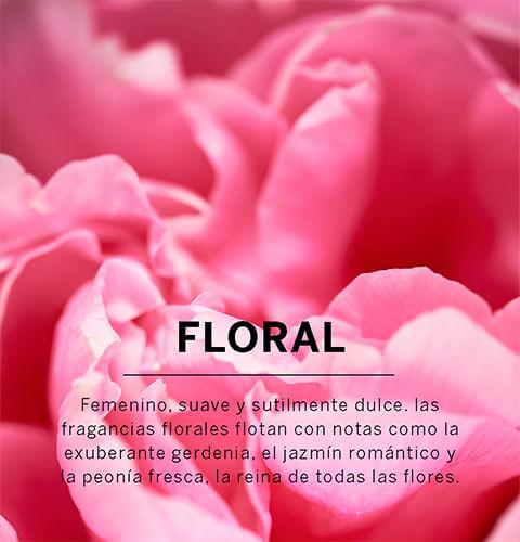 Fragancias Florales | Victoria Secret Chile
